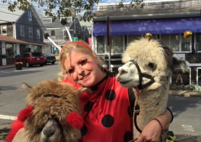 Halloween with Alpacas